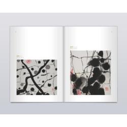 Les Vicissitudes des Chinois en Indochine (印支华人沧桑岁月)